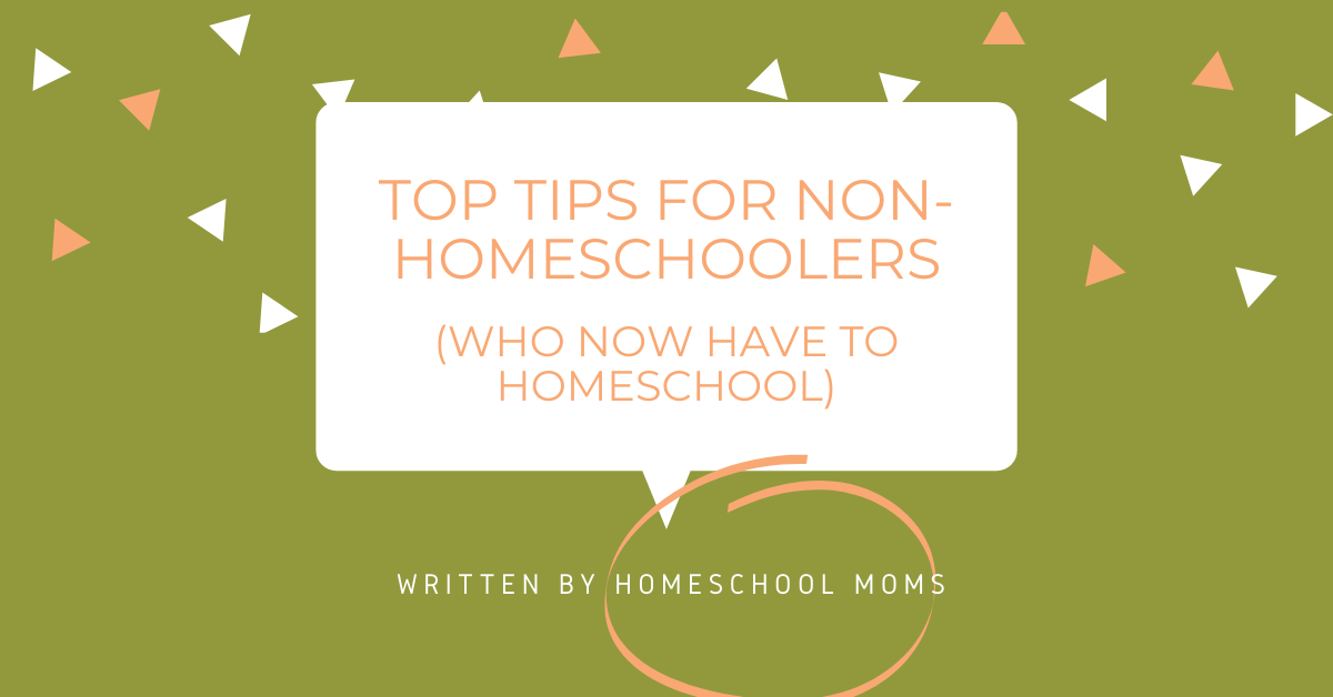 Copy of Copy of top tips for non-homeschoolers.png
